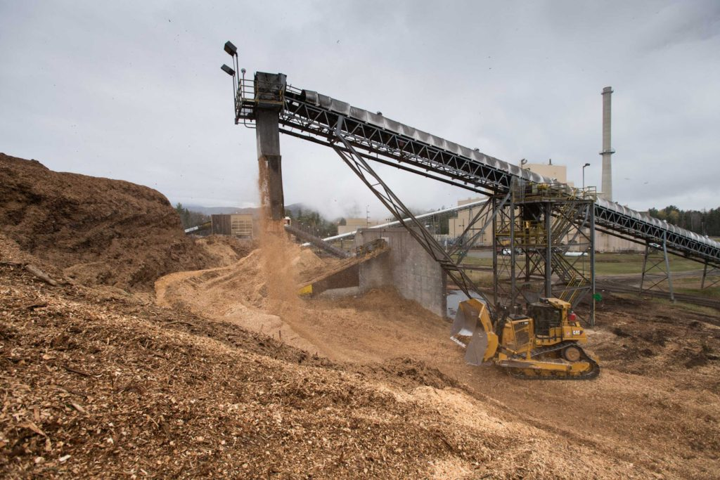 Biomass Material at ReEnergy Stratton